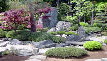 Australian Hypnosis - Garden